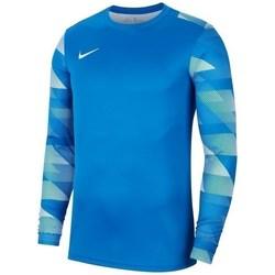 vaatteet Miehet Svetari Nike Dry Park IV Vaaleansiniset