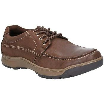kengät Miehet Derby-kengät Hush puppies  Brown