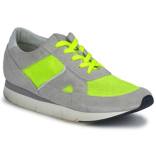 kengät Naiset Matalavartiset tennarit OXS GEORDIE Grey / Yellow