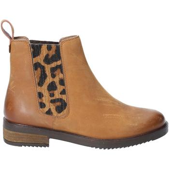 kengät Naiset Bootsit Hush puppies  Tan