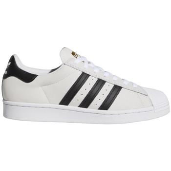 kengät Miehet Skeittikengät adidas Originals Superstar adv Valkoinen