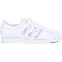 kengät Lapset Matalavartiset tennarit adidas Originals Superstar J Valkoiset