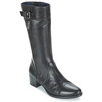 kengät Naiset Bootsit Dorking LOLETA Black