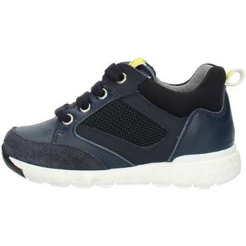 kengät Lapset Korkeavartiset tennarit Nero Giardini A923730M Blue