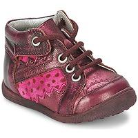 kengät Tytöt Bootsit Catimini CABILLAUD Vaaleanpunainen / Ruskea