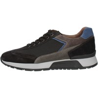 kengät Miehet Matalavartiset tennarit Nero Giardini A901181U Black