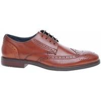 kengät Miehet Derby-kengät Josef Seibel 42205786370 Ruskeat