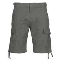 vaatteet Miehet Shortsit / Bermuda-shortsit Jack & Jones JJIALFA Grey