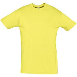 vaatteet Miehet Lyhythihainen t-paita Sols REGENT COLORS MEN Amarillo