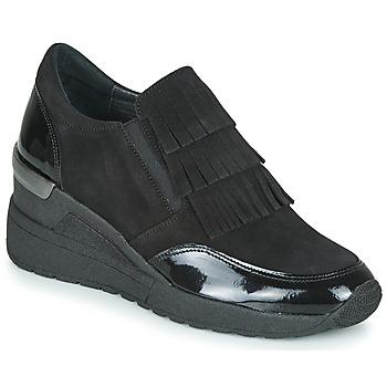 kengät Naiset Derby-kengät Myma KALA Black