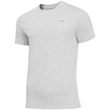 vaatteet Miehet Lyhythihainen t-paita 4F TSM003 Harmaat