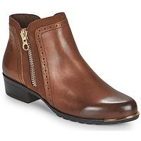 kengät Naiset Bootsit Caprice 25403-313 Konjakki