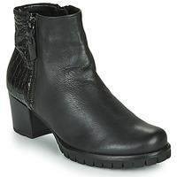 kengät Naiset Nilkkurit Gabor 5665367 Musta