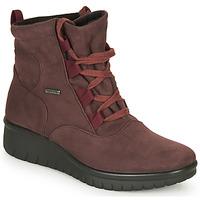 kengät Naiset Bootsit Romika Westland CALAIS 08 Viininpunainen