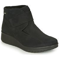 kengät Naiset Bootsit Romika Westland CALAIS 53 Black