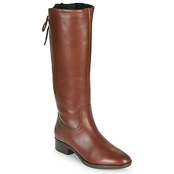 kengät Naiset Saappaat Geox FELICITY Ruskea