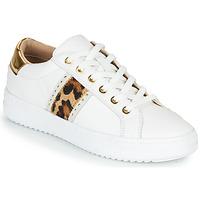 kengät Naiset Matalavartiset tennarit Geox PONTOISE White / Leopardi