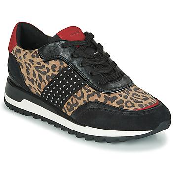 kengät Naiset Matalavartiset tennarit Geox TABELYA Leopardi / Black