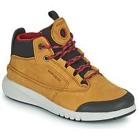 kengät Pojat Bootsit Geox AERANTER ABX Camel