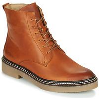 kengät Naiset Bootsit Kickers OXIGENO Camel / Orange
