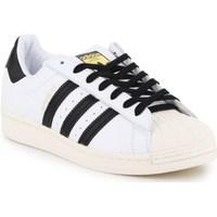 kengät Miehet Matalavartiset tennarit adidas Originals Superstar Laceless Valkoiset,Mustat