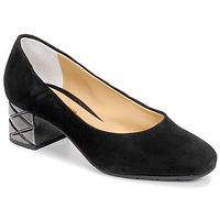 kengät Naiset Korkokengät Perlato JAMINET Black