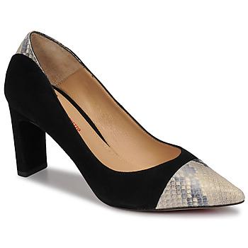 kengät Naiset Korkokengät Perlato JAMIRI Musta / Beige