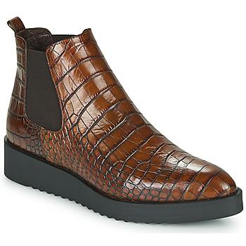 kengät Naiset Bootsit Perlato JAMINO Ruskea