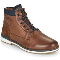 kengät Miehet Bootsit Redskins ACCRO Brown