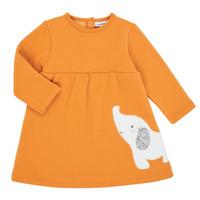 vaatteet Tytöt Lyhyt mekko Noukie's Z050083 Orange