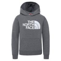 vaatteet Lapset Svetari The North Face DREW PEAK HOODIE Harmaa