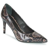 kengät Naiset Korkokengät Tosca Blu SF2012S224-C60 Black