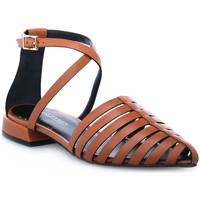 kengät Naiset Sandaalit ja avokkaat Elvio Zanon PARMA CUOIO Marrone