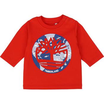 vaatteet Pojat T-paidat pitkillä hihoilla Timberland T95889 Red