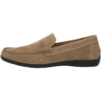 kengät Miehet Mokkasiinit Imac 500711 Beige