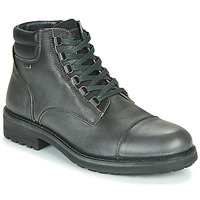 kengät Miehet Bootsit IgI&CO UOMO FREDDY GTX Harmaa