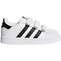 kengät Lapset Matalavartiset tennarit adidas Originals Superstar CF I Valkoiset