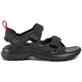 kengät Miehet Urheilusandaalit The North Face Hedgehog Sandal Iii Mustat
