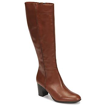 kengät Naiset Saappaat Fericelli NAVAROIS Camel