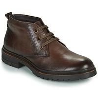 kengät Miehet Bootsit Casual Attitude NENDAME Brown