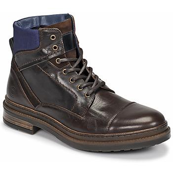 kengät Miehet Bootsit Casual Attitude NYSOPE Brown