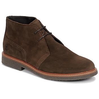 kengät Miehet Bootsit Casual Attitude NETOINE Brown