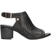 kengät Naiset Sandaalit ja avokkaat Nero Giardini E012290D Black