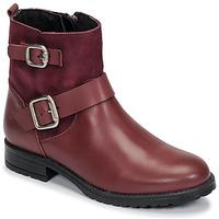 kengät Tytöt Bootsit Citrouille et Compagnie NIVOLE Bordeaux