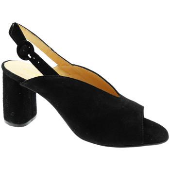kengät Naiset Sandaalit ja avokkaat Soffice Sogno SOSO20150ne nero