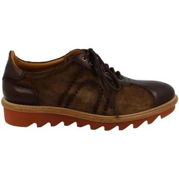 kengät Miehet Derby-kengät & Herrainkengät Calce  Marrón