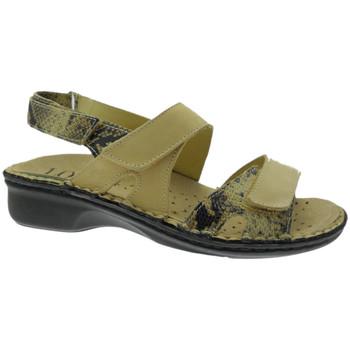 kengät Naiset Sandaalit ja avokkaat Calzaturificio Loren LOM2833ta tortora