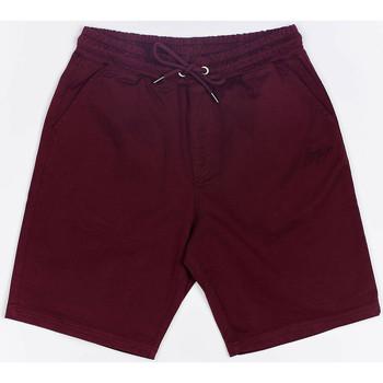 vaatteet Miehet Shortsit / Bermuda-shortsit Wrung Short  Shark rouge bordeaux