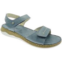 kengät Naiset Sandaalit ja avokkaat Riposella RIP40726bl blu