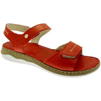 kengät Naiset Sandaalit ja avokkaat Riposella RIP40726ro rosso